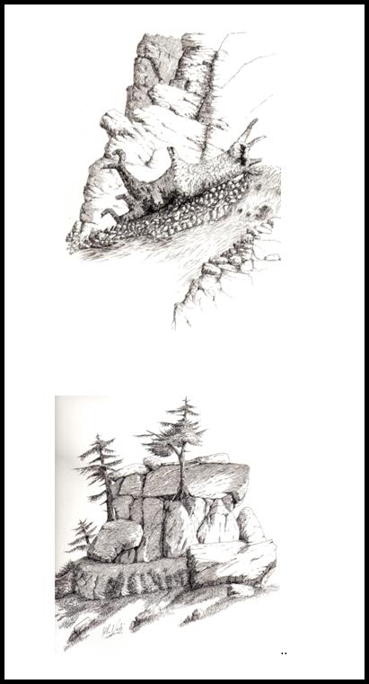 Marmotas w2