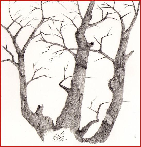 Arboles y arbustos monta as de tinta de manuel velis - Ramas de arboles ...
