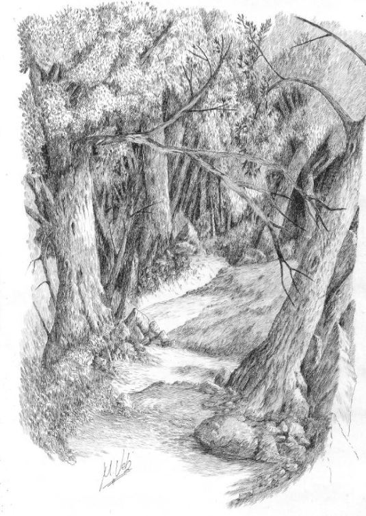 Bosque de Orandi