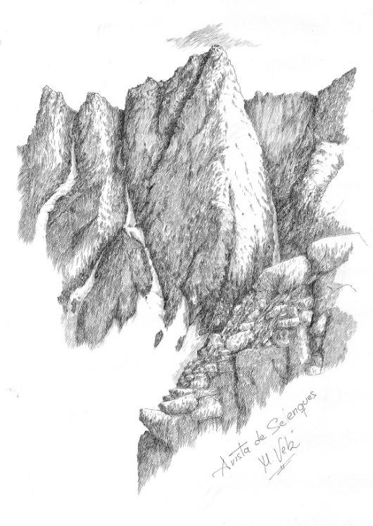 arista-de-selenques