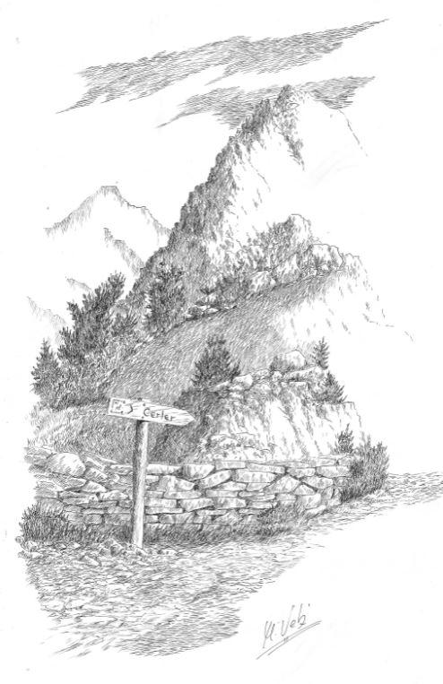 camino-de-cerler